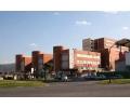 Servicio de Diagnóstico por Imagen en Murcia